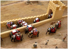 Elephant Ride - At Amber Fort, Jaipur